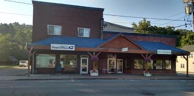 Jeffersonville NY Commercial For Sale: $399,000