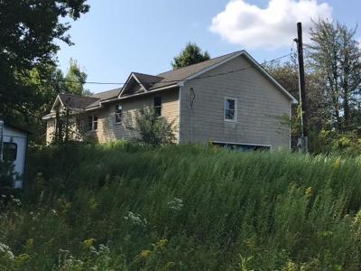 Fallsburg Single Family Home For Sale