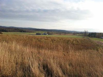 Jeffersonville NY Residential Lots & Land For Sale: $155,000