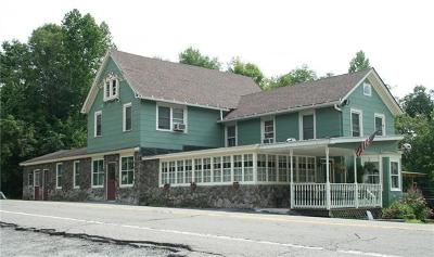 Kenoza Lake NY Commercial For Sale: $249,000