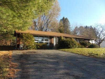 Liberty NY Single Family Home Sold: $115,000