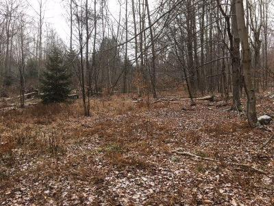 Residential Lots & Land For Sale: White Roe Lake Road
