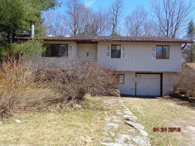 Loch Sheldrake NY Single Family Home Contract: $39,900
