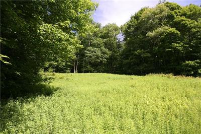 Delaware County Residential Lots & Land For Sale: Rt 97