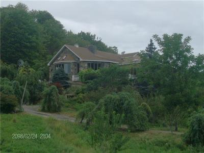 Delaware County Single Family Home For Sale: 963 County Highway 26