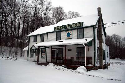 White Sulpher Springs NY Commercial For Sale: $289,000