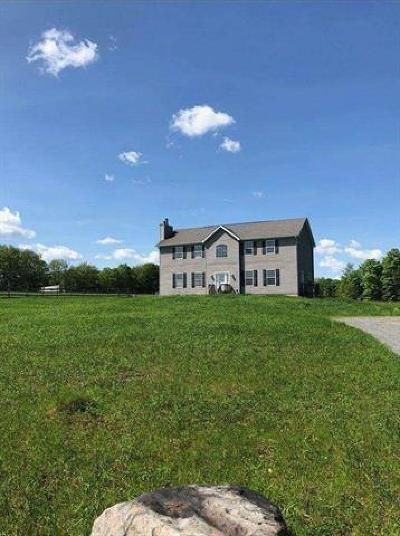Dutchess County, Orange County, Sullivan County, Ulster County Single Family Home For Sale: 224 Reynolds Road