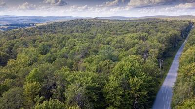 Residential Lots & Land For Sale: 249 White Roe Lake Road