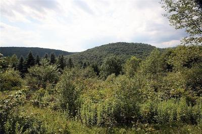Delaware County Residential Lots & Land For Sale: Lang Road