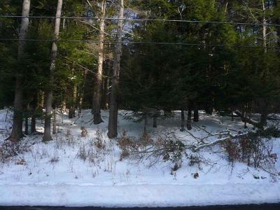 Liberty NY Residential Lots & Land For Sale: $60,000