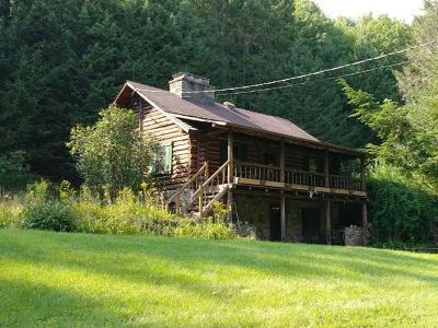 Single Family Home For Sale: 527 North Branch-Callicoon Ctr Road