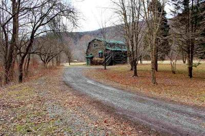 Delaware County Single Family Home For Sale: 36 Airport Road