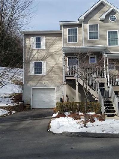 Ellenville Single Family Home For Sale: 109 Woodland