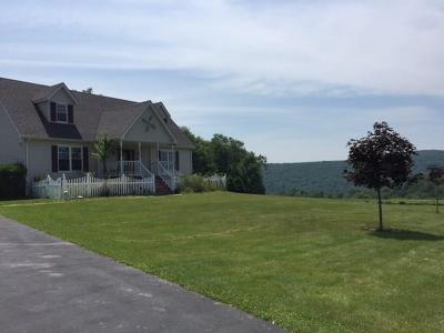 Callicoon, Callicoon Center Single Family Home For Sale: 26 Gabel