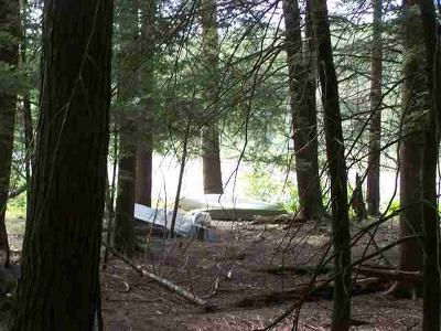 Residential Lots & Land For Sale: 00 Forestburgh
