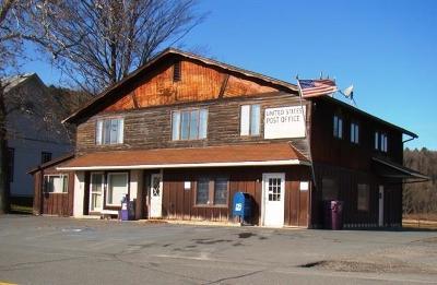 Cochecton Multi Family 2-4 For Sale: 45 County Route 114