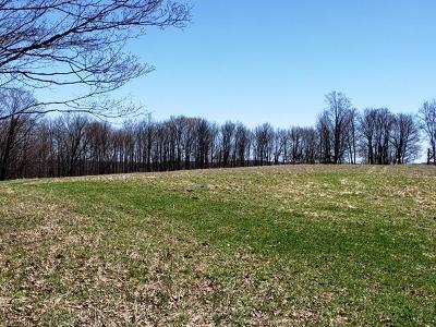 Bethel NY Residential Lots & Land For Sale: $110,000