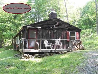 Delaware County Single Family Home For Sale: 00 Dry Brook
