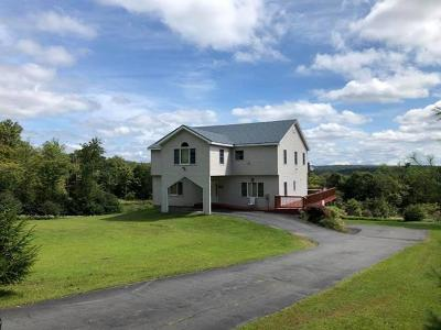 Livingston Manor NY Single Family Home For Sale: $599,000