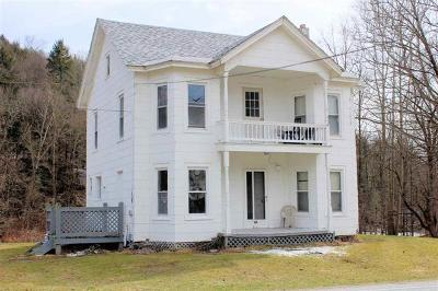 Callicoon Multi Family 2-4 For Sale: 572 North Branch Hortonville Road