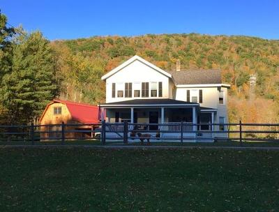 Livingston Manor, Roscoe Single Family Home For Sale: 227 Cooksfalls