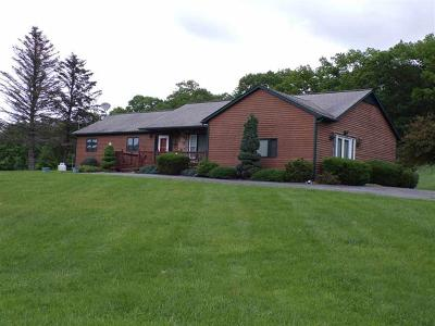 Callicoon, Callicoon Center Single Family Home For Sale: 279 Kautz