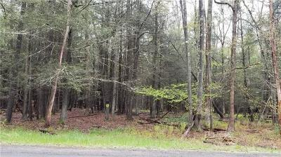 Narrowsburg Residential Lots & Land For Sale: Lot #16 Perry Pond Road
