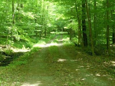 Orange County, Sullivan County, Ulster County Residential Lots & Land For Sale: Sub Lot 8 Naomi Drive