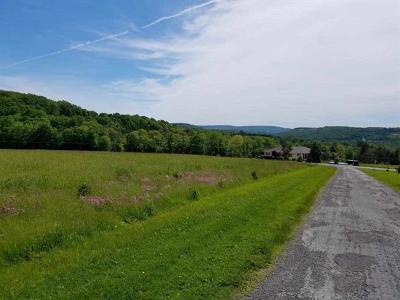 Residential Lots & Land For Sale: Hessinger Lare Road