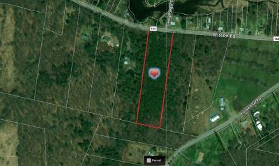 Bethel Residential Lots & Land For Sale: 5.4 Acres Briscoe Road