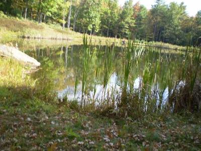 Narrowsburg Residential Lots & Land For Sale: (1.27/28) Perry Pond Road