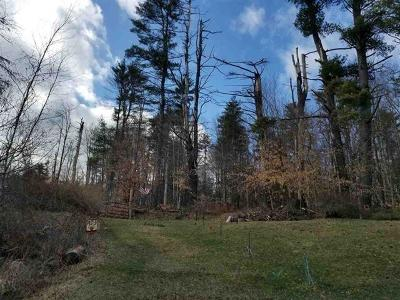 Cochecton Residential Lots & Land For Sale: 1192 County Road 115