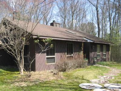 Sullivan County Single Family Home For Sale: 36 West Delaware
