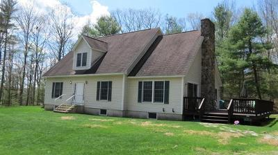 Narrowsburg Single Family Home For Sale: 82 Mathias Weiden