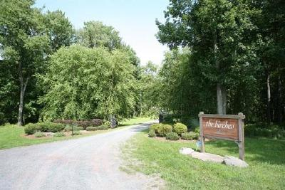 Bethel Residential Lots & Land For Sale: Lot 5 Silver Birch