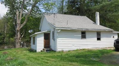 Narrowsburg NY Single Family Home For Sale: $82,000