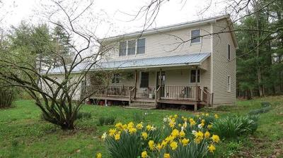 Narrowsburg Single Family Home For Sale: 511 Tyler Road