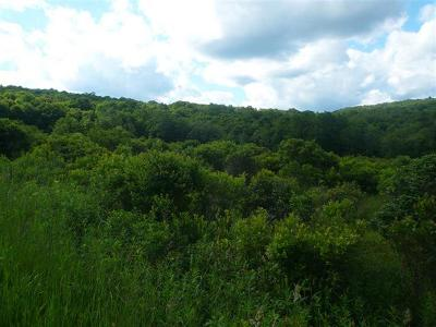 Sullivan County Residential Lots & Land For Sale: Tuttle Hill Road