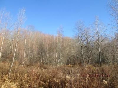 Orange County, Sullivan County, Ulster County Residential Lots & Land For Sale: Goff Road
