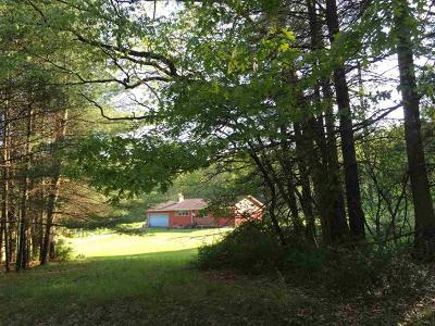 Narrowsburg Single Family Home For Sale: 283 Co Road 22
