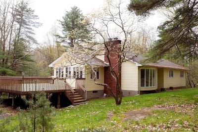 Sullivan County Single Family Home For Sale: 143 Highland Lake