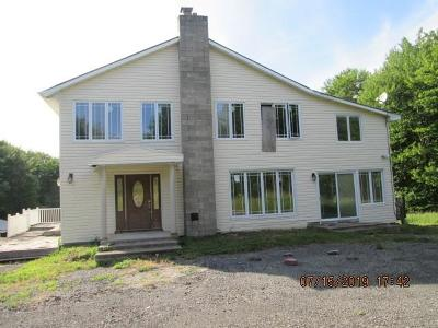 Napanoch Single Family Home For Sale: 96 Campbell