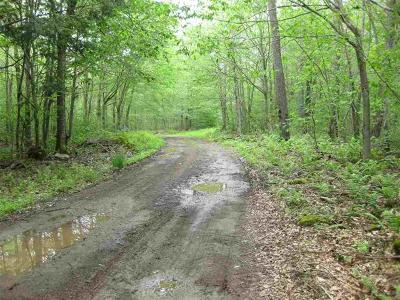 Callicoon, Callicoon Center Residential Lots & Land For Sale