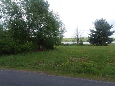 Sullivan County Residential Lots & Land For Sale: (19) Manchester