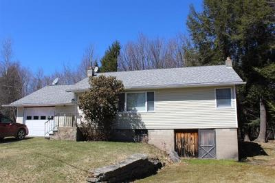 Livingston Manor NY Single Family Home For Sale: $129,000