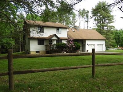 Narrowsburg Single Family Home For Sale: 51 Dexheimer Road