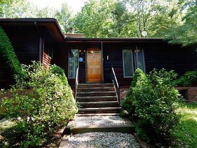 Single Family Home For Sale: 49 Hunczak Boulevard