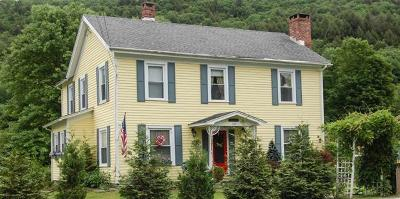 Sullivan County Single Family Home For Sale: 154 Rockland Road