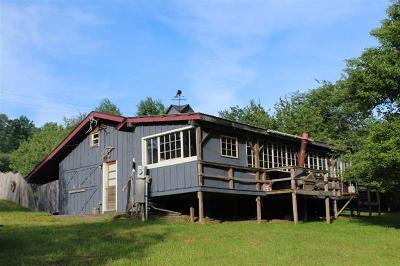 Delaware County Single Family Home For Sale: 150 Granger