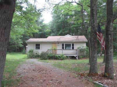 Barryville, Woodridge Single Family Home For Sale: 125 Mapes